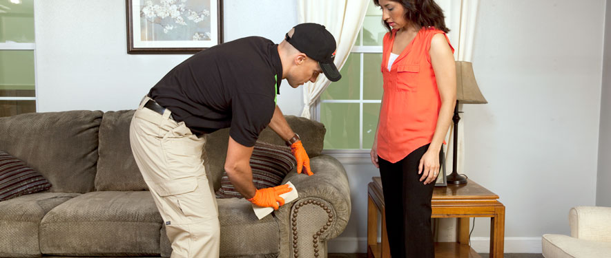 Garden City, NY carpet upholstery cleaning