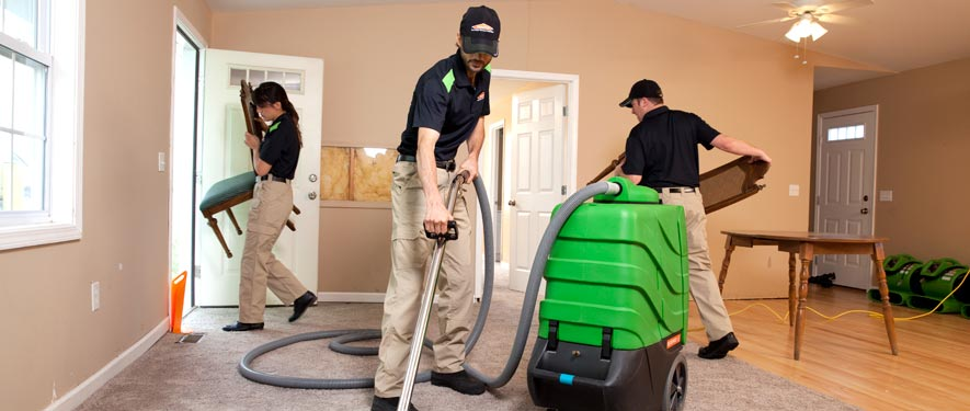 Garden City, NY cleaning services